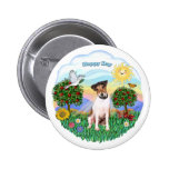 Jack Russell Terrier 1 (1) Pinback Button