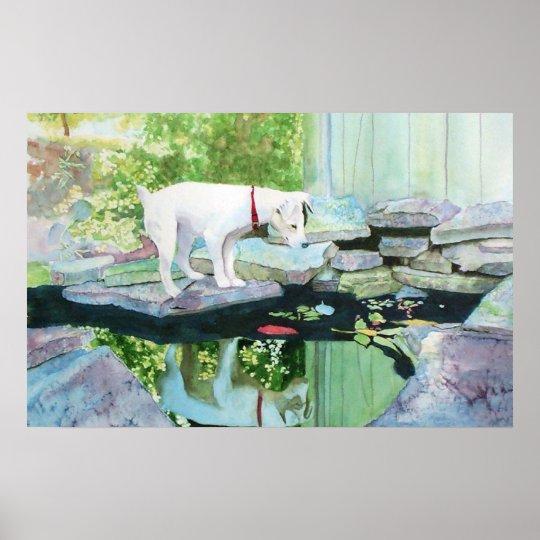 Jack Russell Terrier #1 Print