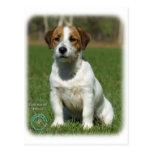 Jack Russell Terrier 9M097D-068 Postales