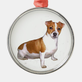 Jack Russell Terrier (B) - red and white Metal Ornament