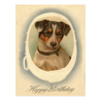 Jack Russell Terrier Collar Birthday Postcard