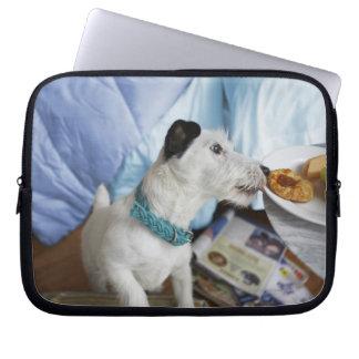 Jack russell terrier. computer sleeves