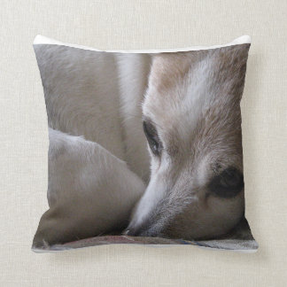 jack russell terrier curled throw pillow