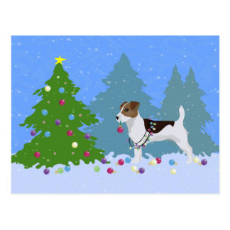 Jack Russell Terrier Decorating Christmas Tree Postcard