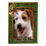 Jack Russell Terrier Dog Blank Christmas Card