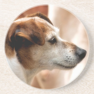 JACK RUSSELL TERRIER DOG DRINK COASTER
