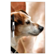 Jack Russell Terrier Dog Dry-erase Board at Zazzle