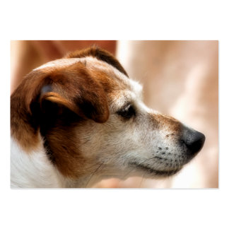JACK RUSSELL TERRIER DOG LARGE BUSINESS CARD