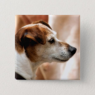JACK RUSSELL TERRIER DOG PINBACK BUTTON