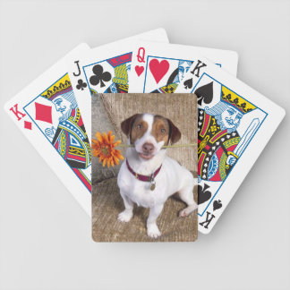 Jack Russell Terrier Dog Playing Cards