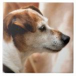 JACK RUSSELL TERRIER DOG TILES