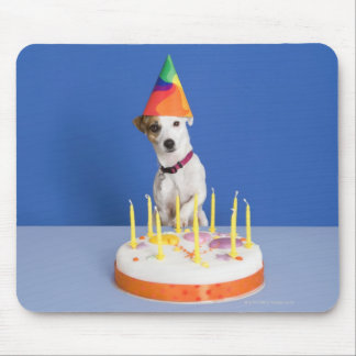 Jack Russell Terrier dog wearing party hat Mouse Pad