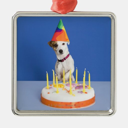 Jack Russell Terrier dog wearing party hat Christmas Ornament