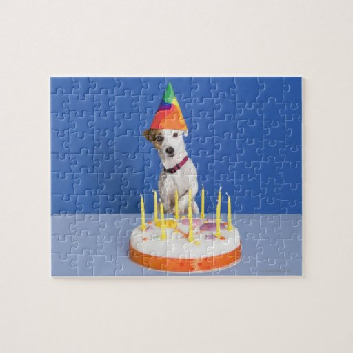 Jack Russell Terrier dog wearing party hat Puzzle