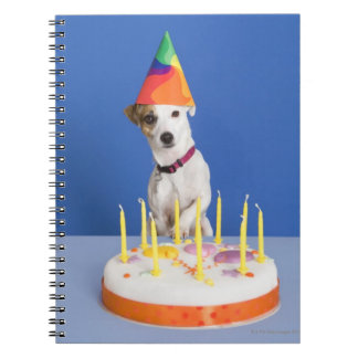 Jack Russell Terrier dog wearing party hat Spiral Notebook