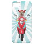 Jack Russell Terrier en el ciclomotor rojo iPhone 5 Carcasas