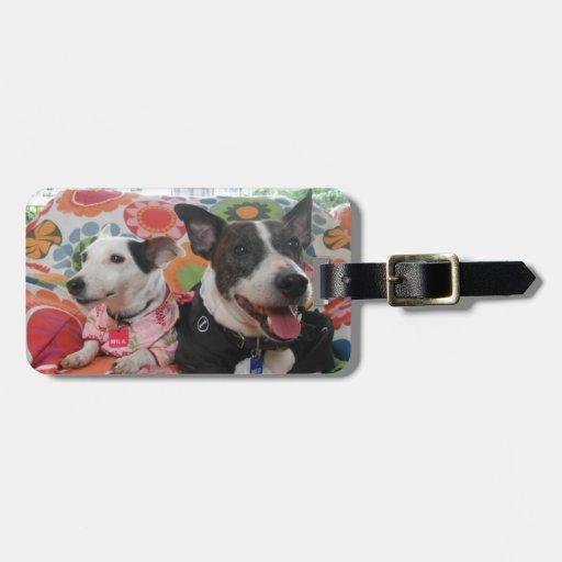 Jack Russell Terrier Etiquetas Bolsas