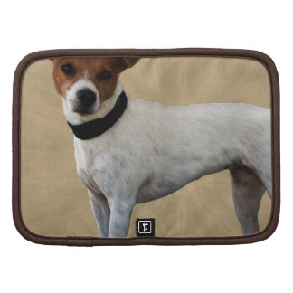 Jack Russell Terrier Planificadores