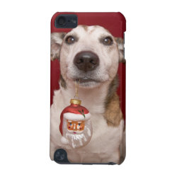 Case-Mate Barely There 5th Generation iPod Touch Case with Jack Russell Terrier Phone Cases design