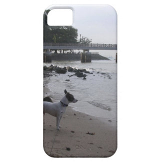 Jack Russell Terrier iPhone SE/5/5s Case