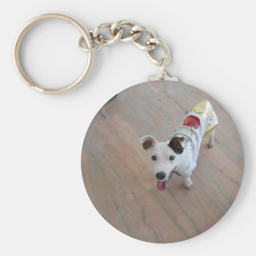 Jack Russell Terrier Key Chain
