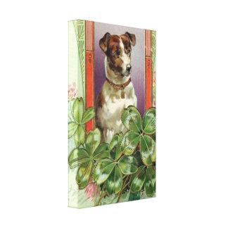 Jack Russell Terrier Lona Envuelta Para Galerias
