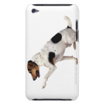 Jack Russell Terrier Lifting Paw iPod Case-Mate Case