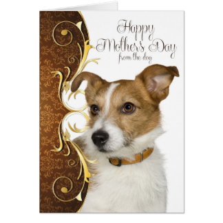 Jack Russell Terrier Mother's Day Card