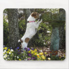 JACK RUSSELL TERRIER MOUSE PAD