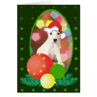 Jack Russell Terrier Ornaments Greeting Card