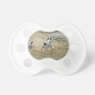 Jack Russell Terrier Pacifiers