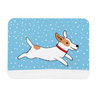 Jack Russell Terrier - perro feliz de la nieve del Imán