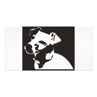 Jack Russell Terrier Photo Card Template