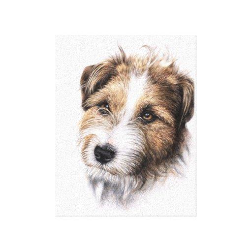 Jack Russell Terrier Portrait Lona Envuelta Para Galerias