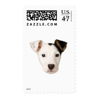 Jack Russell Terrier Postage