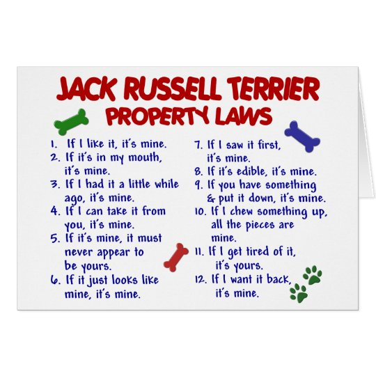 JACK RUSSELL TERRIER Property Laws 2 Card