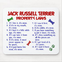 JACK RUSSELL TERRIER Property Laws 2