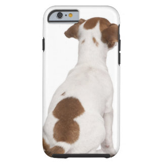 Jack Russell Terrier puppy (3 months old) Tough iPhone 6 Case