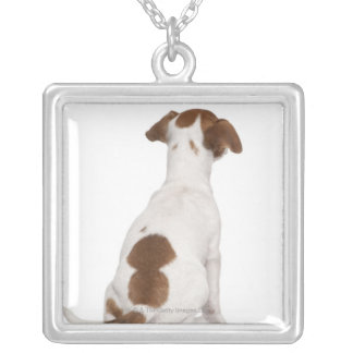 Jack Russell Terrier puppy (3 months old) Silver Plated Necklace