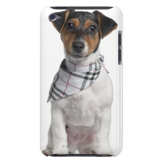 Jack Russell Terrier puppy (4 months old) iPod Touch Cover