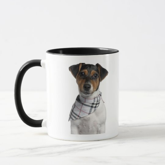 Jack Russell Terrier puppy (4 months old) Mug