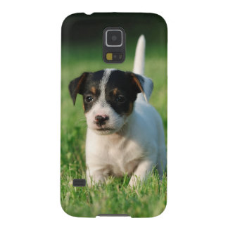 Jack Russell Terrier puppy Case For Galaxy S5