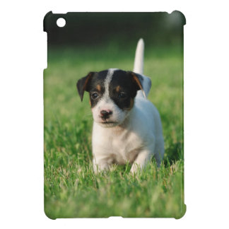 Jack Russell Terrier puppy Cover For The iPad Mini