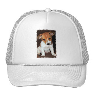Jack Russell Terrier Puppy Dog  Baseball Hat