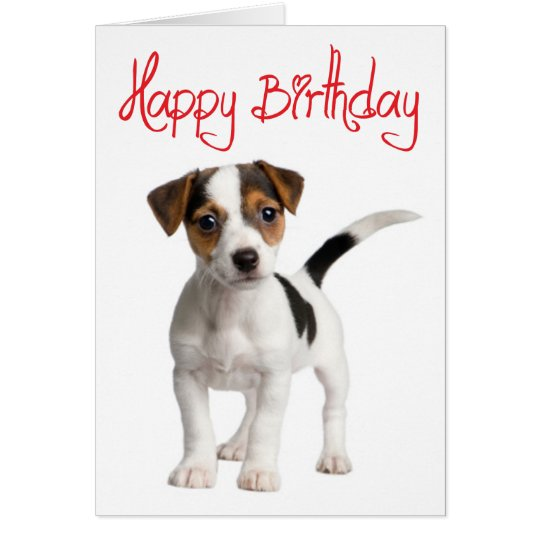 Jack Russell Terrier Puppy Dog Birthday Card – Birthday Cards Dogs