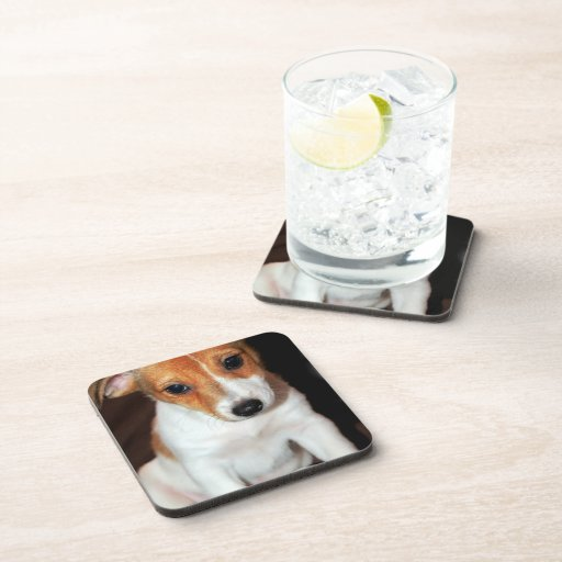 Jack Russell Terrier Puppy Dog Cork Coasters