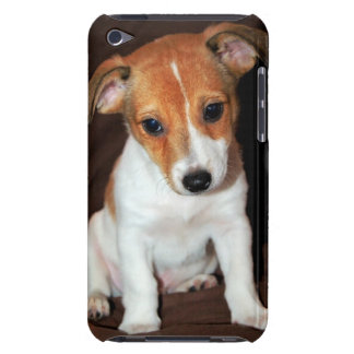 Jack Russell Terrier Puppy Dog iTouch Case