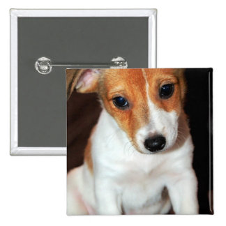 Jack Russell Terrier Puppy Dog  Pin