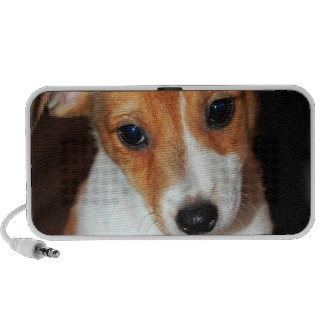 Jack Russell Terrier Puppy Dog Speakers