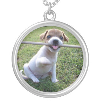 Jack Russell Terrier Puppy Necklace